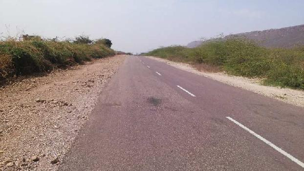 4 bigha farm land for sell in barundhan village bundi