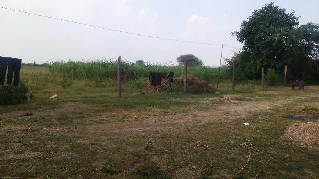 farm land for sell in shivganj village bundi