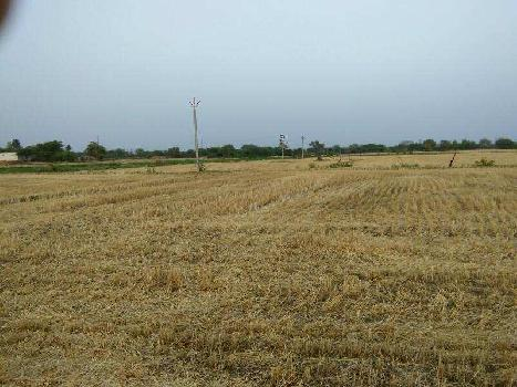 agriculture land for sell in shahpura khurd village tonk