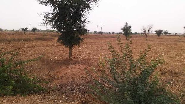agriculture land for sell in karmoda village