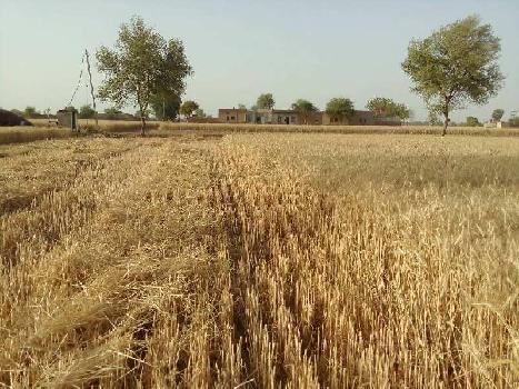 agriculture land for sell in nagar fort village bundi