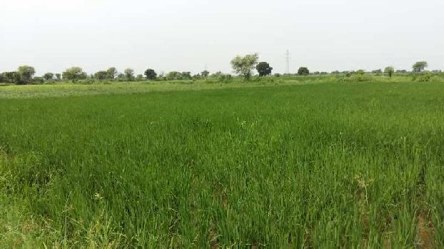 agriculture land for sell in alod village bundi
