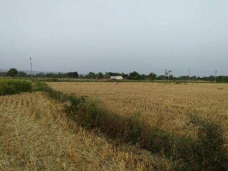 agriculture land for sell in jhopdiya village bundi
