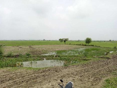 agriculture land for sell in indargarh bundi