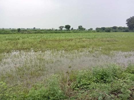 agriculture land for sell in labaan highway bundi