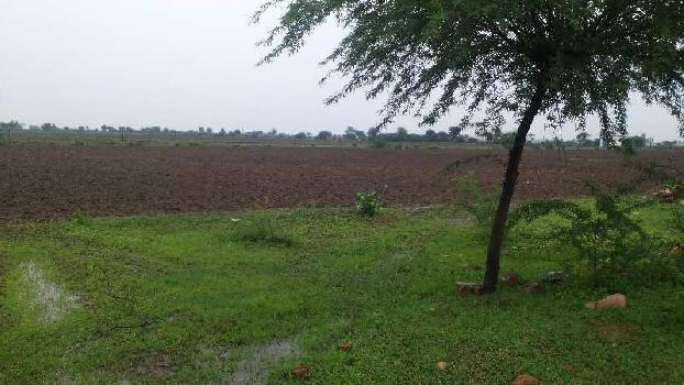 agriculture land for sell in haleda bundi