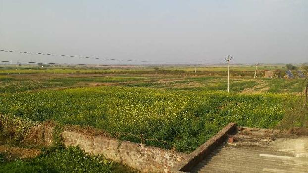 agriculture land for sell in dehit bundi
