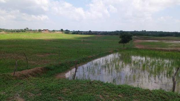 agriculture land for sell in guda bundi