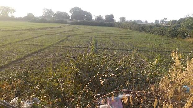 agriculture land for sell in balwan bundi