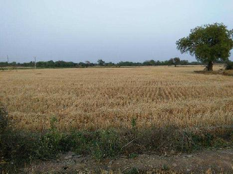 agriculture land for sell in luharpura bundi