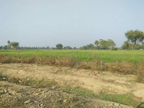 agriculture land for sell in jharkhoda bundi