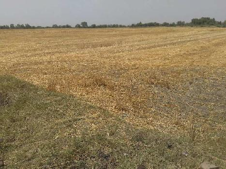 agriculture land for sell in ghutha bundi