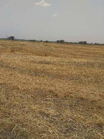 agriculture land for sell in alod bundi