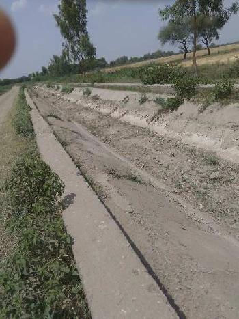 agriculture land for sell in dadwada  bundi