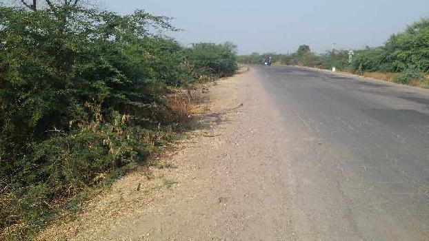 agriculture land for sell in mandana kota