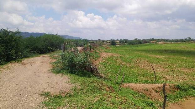 agriculture land for sell in ghagtana kota