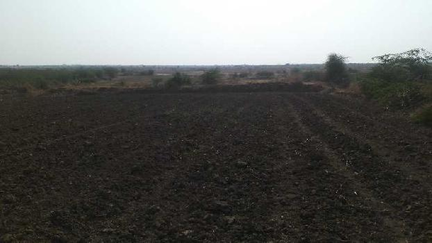 agriculture land for sell in rampuriya kota