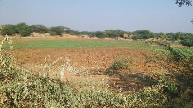 agriculture land for sell in rajopa kota
