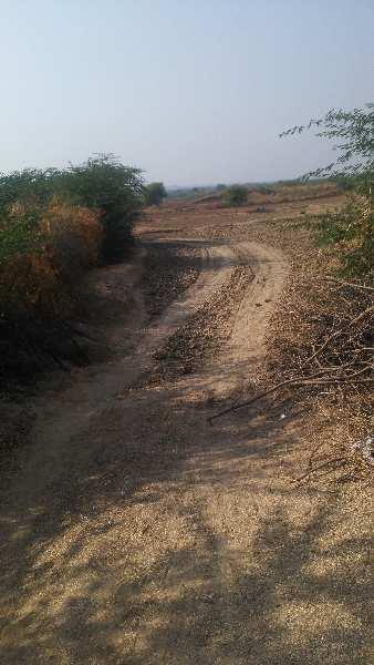 agriculture land for sell in ayani kota