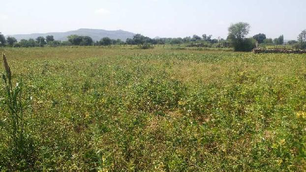 agriculture land for sell in gorela kota