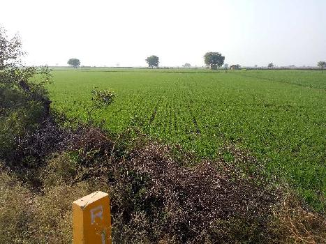 agriculture land for sell in madanpura kota