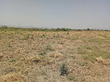agriculture land for sell in morana kota