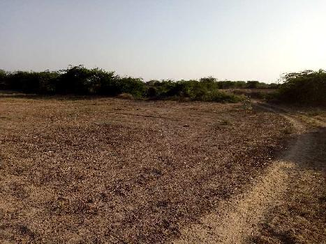 agriculture land for sell in lakh saneeja kota