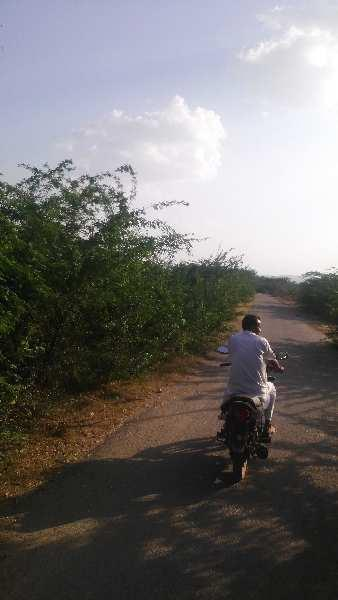 agriculture land for sell in jharol kota