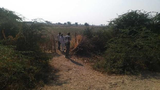 agriculture land for sell in chopar kheri kota