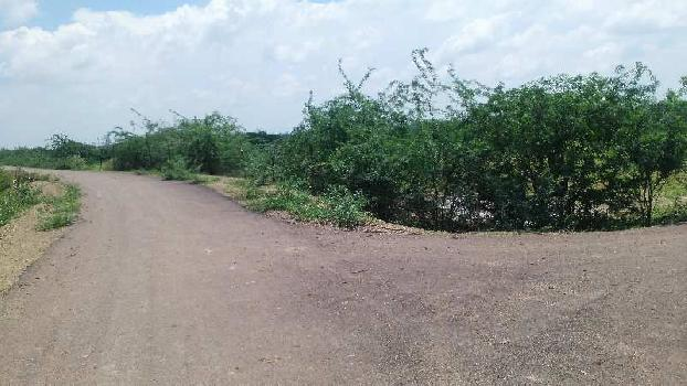 agriculture land for sell in khareda tonk