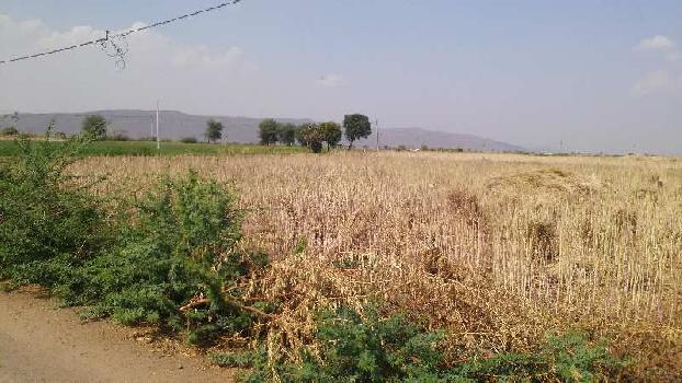 agriculture land for sell in morda tonk