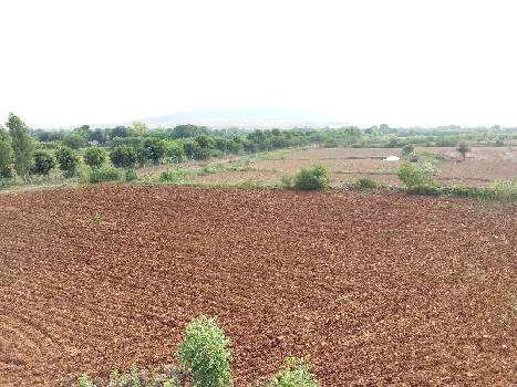 agriculture land for sell in jeerota sawai madhopur
