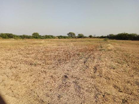 agriculture land for sell in bagida sawai madhopur