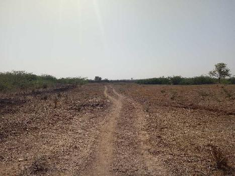 agriculture land for sell in bapvi sawai madhopur