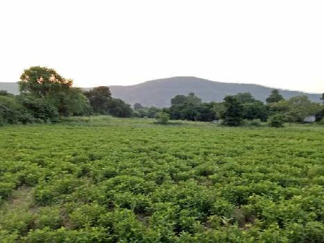 agriculture land for sell in sunela sawai madhopur