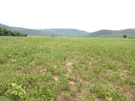 agriculture land for sell in hansolai sawai madhopur