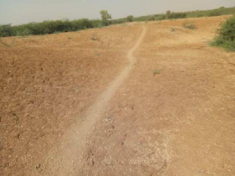 agriculture land for sell in palaita village baran