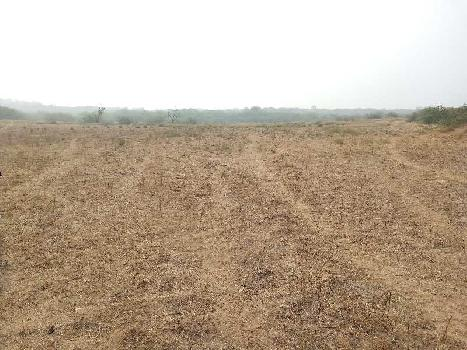 agriculture land for sell in bhanwargarh baran