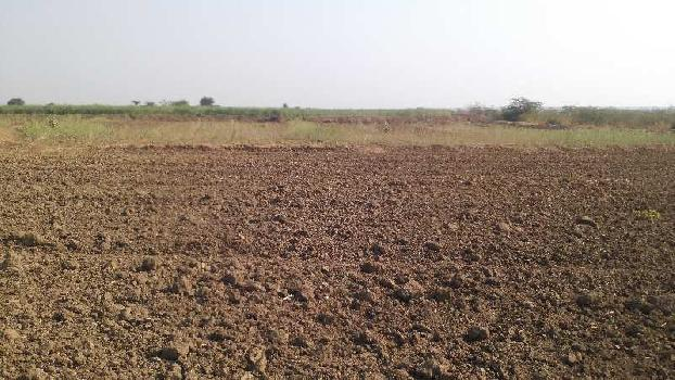agriculture land for sell in baroda baran