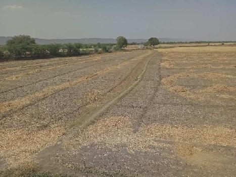 agriculture land for sell in indarapura kota