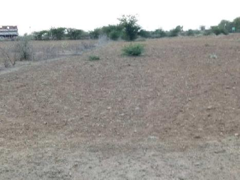 agriculture land for sell in kakriya kota