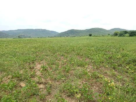 agriculture land for sell in saloniya kota