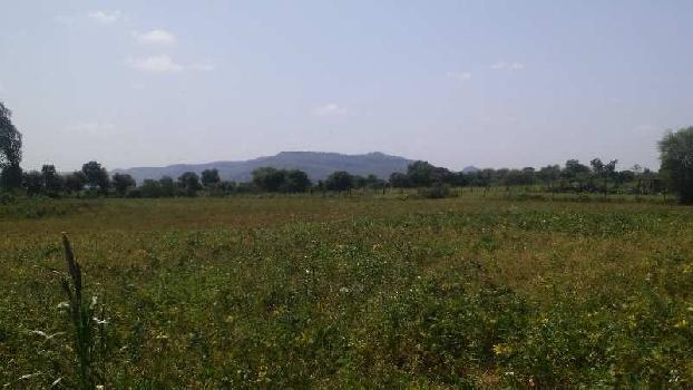 Agricultural/Farm Land for Sale in Jhalrapatan, Jhalawar