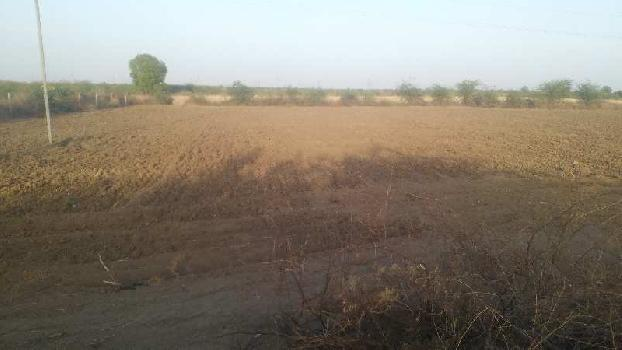agriculture land for sell in beenda jhalawar