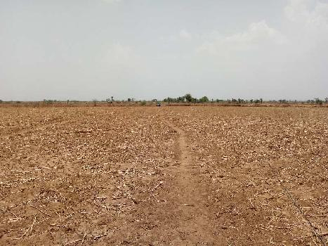 agriculture land for sell in dilwari ajmer