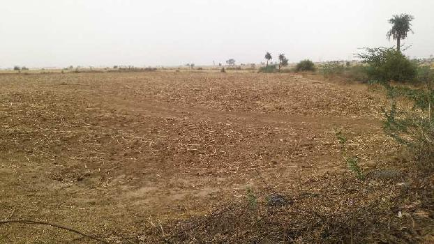 agriculture land for sell in kurki ajmer