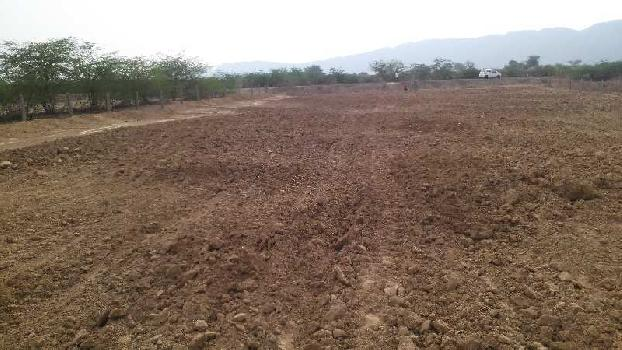 agriculture land for sell in babra ajmer
