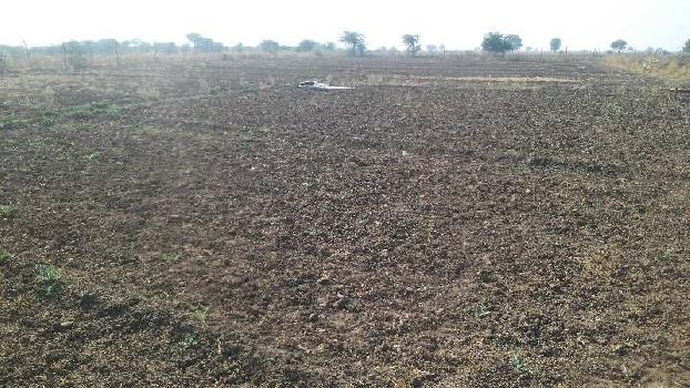 agriculture land for sell in kanuja ajmer