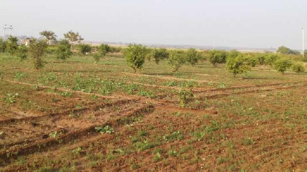 agriculture land for sell in badhor ajmer
