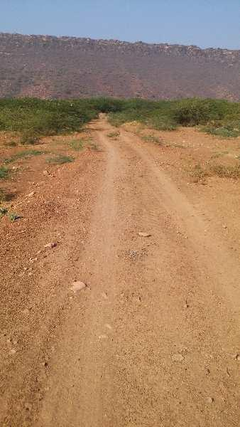 agriculture land for sell in mitrapura dausa